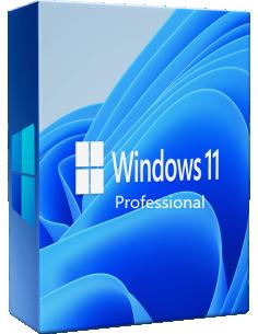 Microsoft Windows 11 Professional